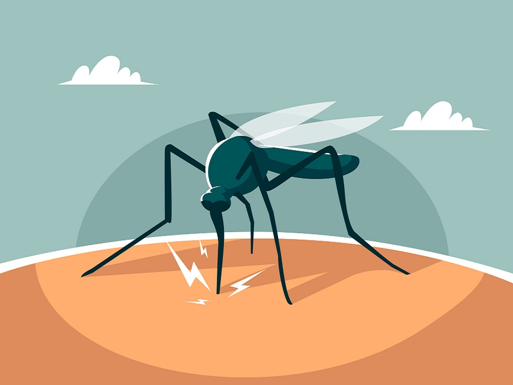 Effective Tips for Malaria Prevention